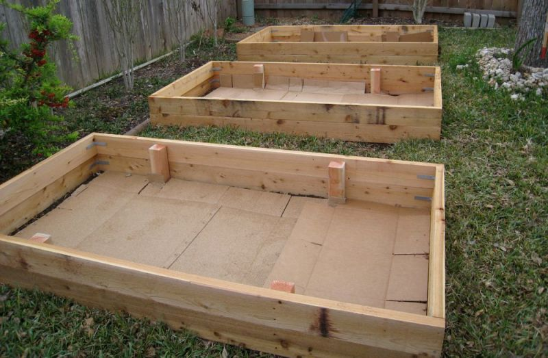 Constructed garden beds, lined with cardboard