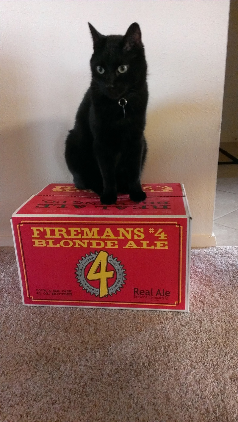 After making it home with my prize, Mojo   was king of the Fireman's 4 beer mountain.