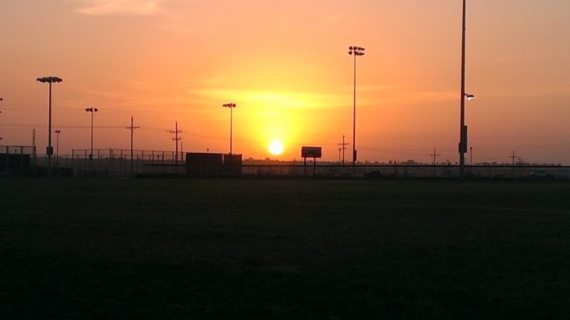 Good morning sun!